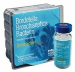 Bronchicine CAe 1mL 10/Doses