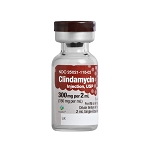 Clindamycin Injection 150mg/mL 2mL