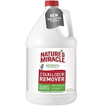 Stain & Odor Remover 1 Gallon
