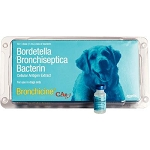 Bronchicine CAe 1mL 50/Doses